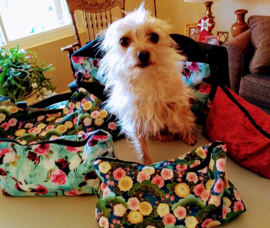 Mahjong storage bags and a customer's dog
