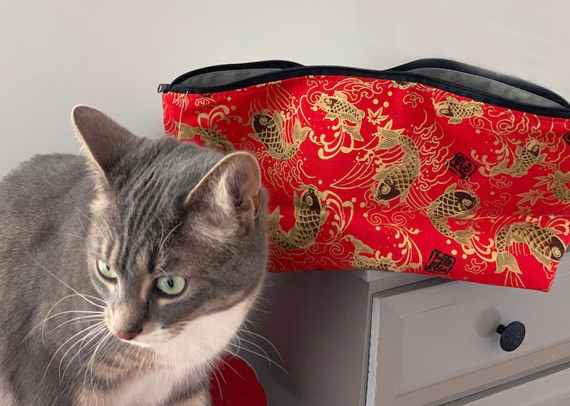 Emmy the cat with a large Zini flat bottom bag for mahjong tiles