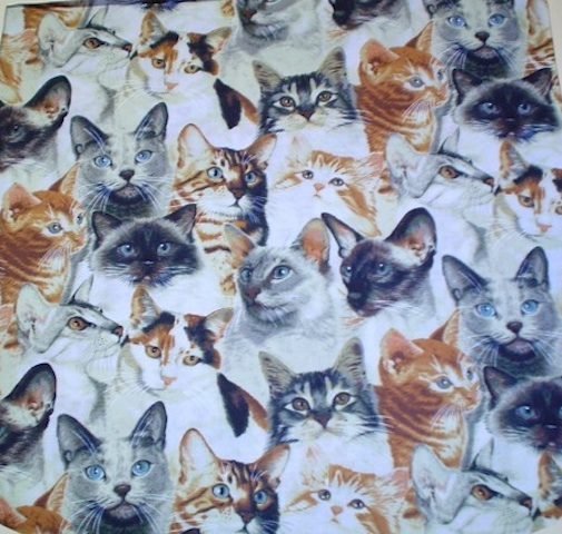 Blue Eyed Cats fabric for custom bags Zoe's Bag Boutique