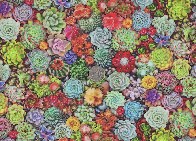 Succulents fabric for custom bags at Zoe's Bag Boutique